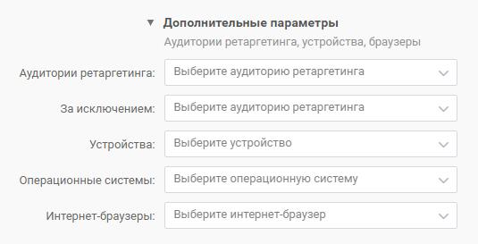 Раздел «Дополнительные параметры»